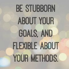 Be stubborn about your goals, and flexible about your methods