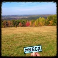 NECX Fruitcup